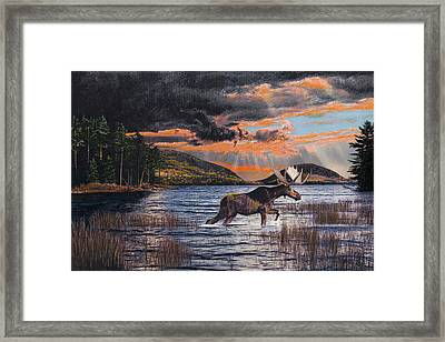 Framed Print featuring the drawing Acadia Feast by Brent Ander