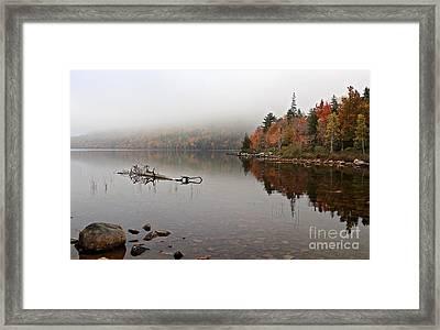 Acadia In The Fog Framed Print