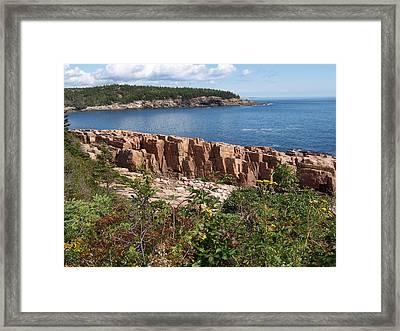 Acadia Maine Framed Print by Catherine Gagne