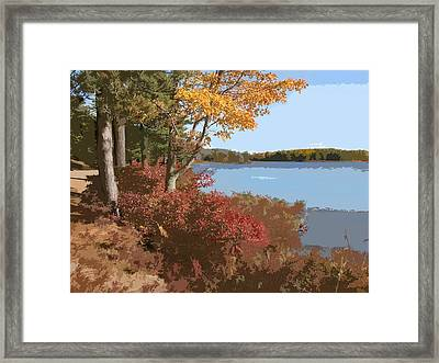 Acadia National Park Carriage Road Framed Print by Elaine Plesser