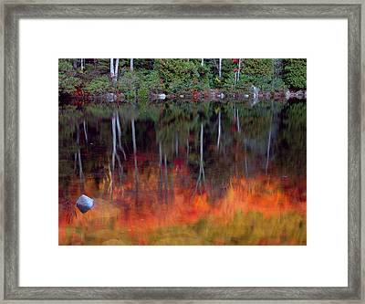 Acadia National Park, Maine Framed Print by Scott T. Smith