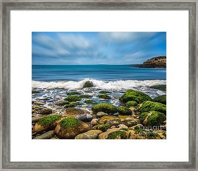 Acadia Ocean Breeze Framed Print by Susan Cole Kelly