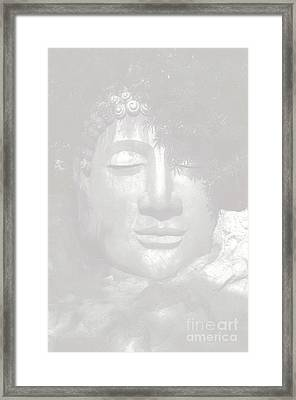 Access To Insight  Framed Print by Vineesh Edakkara