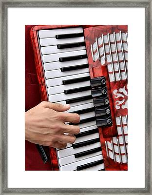 Accordian Framed Print by James Stough