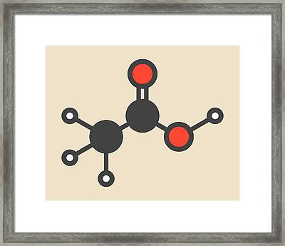 Acetic Acid Molecule Framed Print