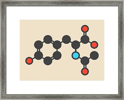 Acetylated Molecule Framed Print