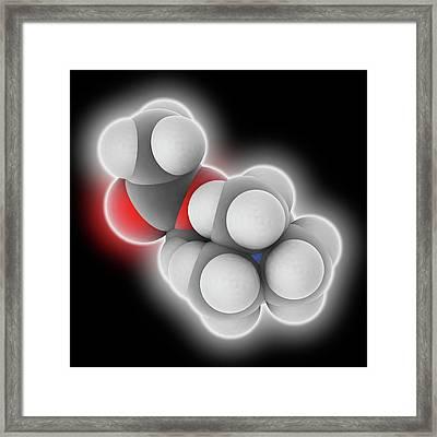 Acetylcholine Molecule Framed Print