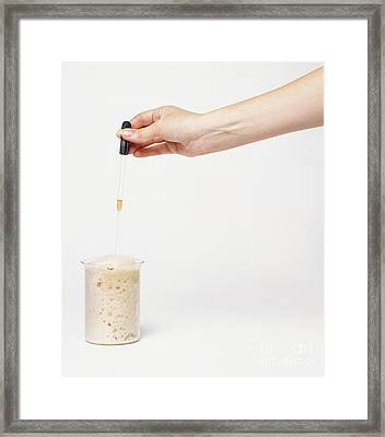 Acid And Baking Soda Reaction Framed Print by Andy Crawford and Tim Ridley / Dorling Kindersley