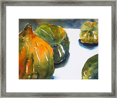 Acorn Squash Framed Print by Tom Simmons