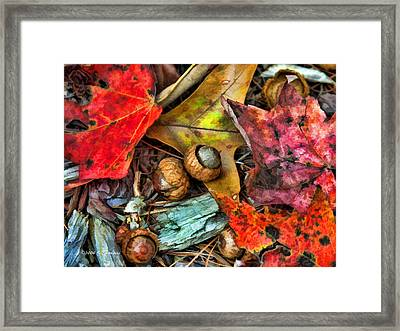 Framed Print featuring the photograph Acorns And Leaves by Kenny Francis