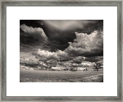 Acres And Acres Of Succotash Framed Print by William Fields