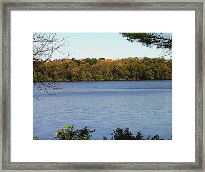 Acres Of Diamonds Framed Print by Dusty Reed