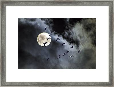 Across A Harvest Moon Framed Print