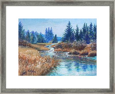 Across The Brook Framed Print