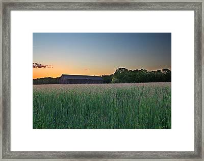 Across The Field Framed Print by Andrea Galiffi