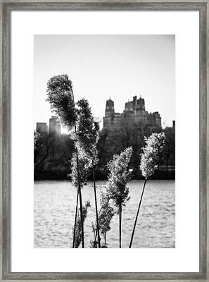 Across The Reservoir Framed Print by Jon Woodhams