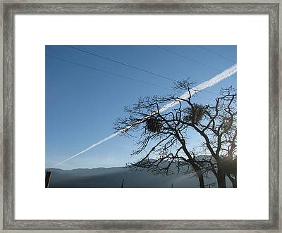 Across The Valley And Through The Trees Framed Print