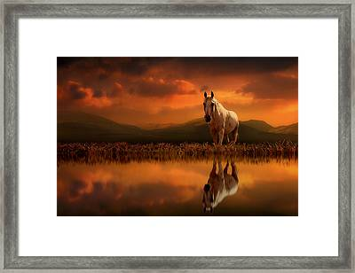 Across The Water Framed Print
