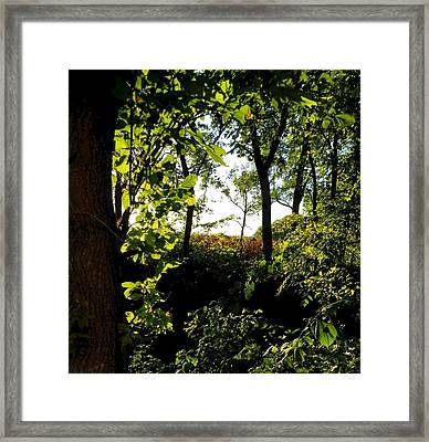 Across The Way Framed Print