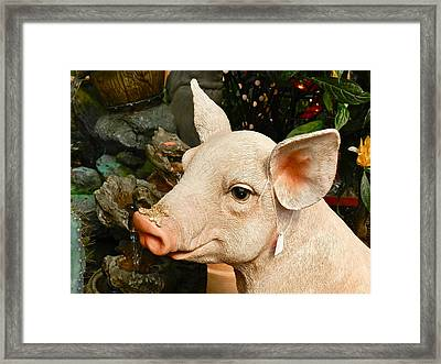 Acrylic Pig At Discount Framed Print by Ion vincent DAnu