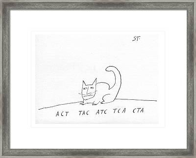 Act Tac Atc Tca Cta Framed Print