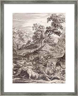 Actaeon Turned Into A Stag And Devoured By His Hounds Framed Print by Bernard Picart