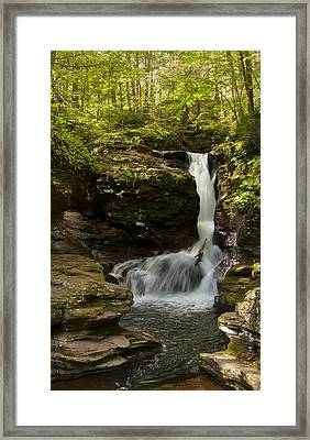 Adams Falls 0348 Framed Print by Tom Kelly
