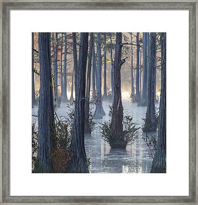 Adams Mill Pond 50 Framed Print