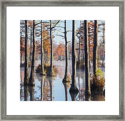 Adams Mill Pond 54 Framed Print