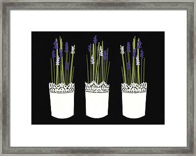 Adh1267900 Framed Print by Isobel Barber