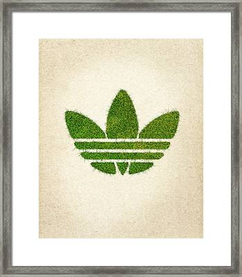 Adidas Grass Logo Framed Print by Aged Pixel