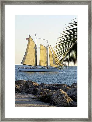 Sailing On The Adirondack In Key West Framed Print
