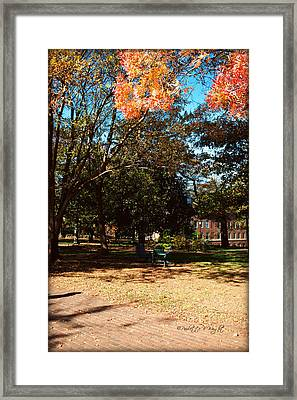 Adirondack Chairs 4 - Davidson College Framed Print by Paulette B Wright