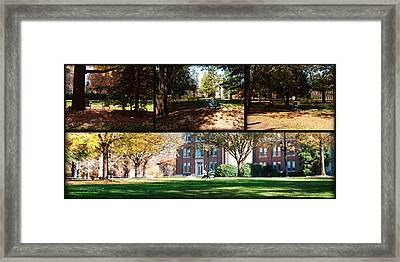 Adirondack Chairs Collage1 Framed Print by Paulette B Wright