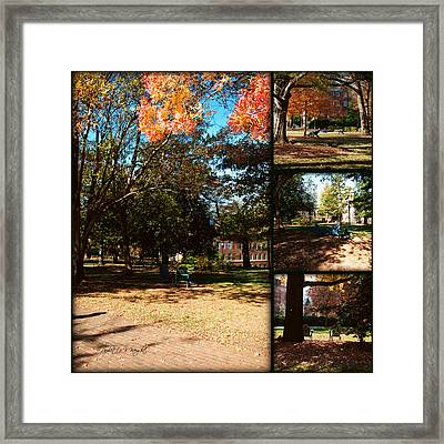 Adirondack Chairs Collage2 Framed Print by Paulette B Wright