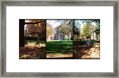 Adirondack Chairs Collage5 Framed Print by Paulette B Wright