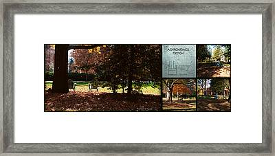 Adirondack Chairs Collage6 Framed Print by Paulette B Wright