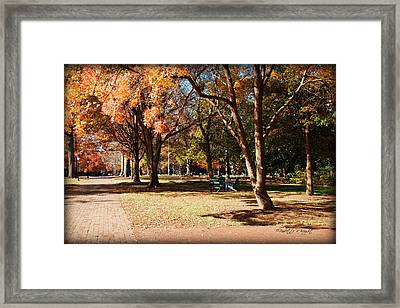 Adirondack Chairs - Davidson College Framed Print by Paulette B Wright