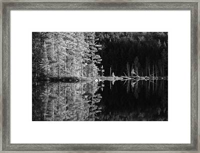 Adirondack Reflections Framed Print