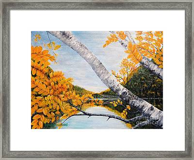 Adirondacks New York Framed Print