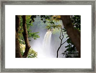 Adirondacks Waterfall Framed Print by Patti Whitten