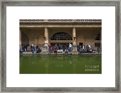 Admirers Framed Print by Svetlana Sewell