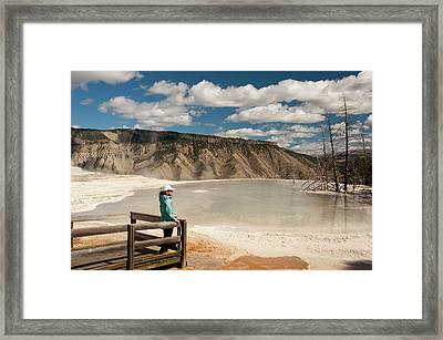 Admiring Canary Springs, Mammoth Framed Print by Howie Garber