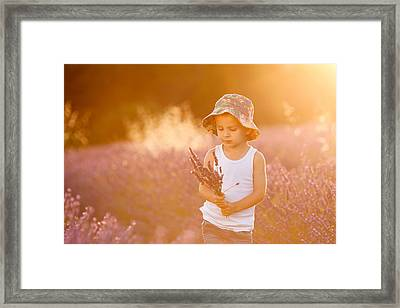 Adorable Cute Boy With A Hat In A Lavender Field Framed Print by Tatyana Tomsickova