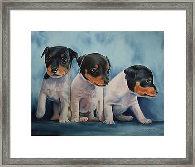 Adorable In Triplicate Framed Print