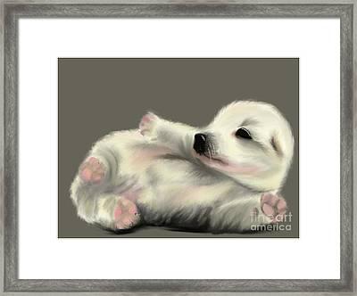 Adorable Pup Framed Print