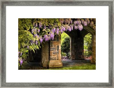 Adorned Framed Print