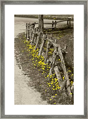 Adorned Split-rail Framed Print