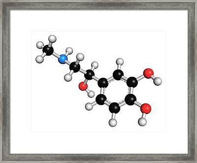 Adrenaline Neurotransmitter Molecule Framed Print by Molekuul