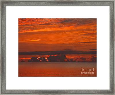 Adrift In Paradise Framed Print by Addie Hocynec